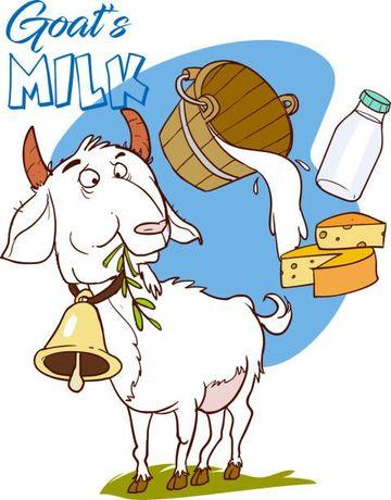 Молоко  козье  .