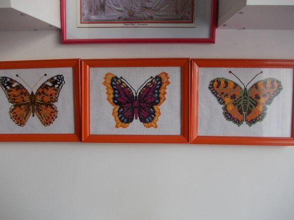 Пеперуди за интериора