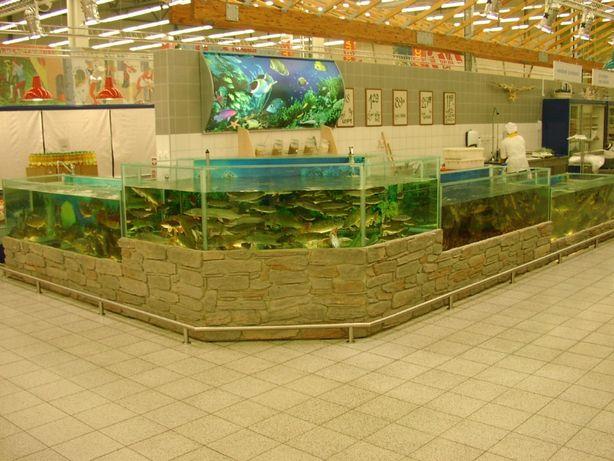 Аквариумы и оборудование для продажи живой рыбы.
