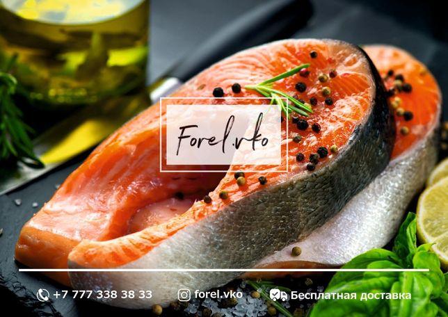 Рыба Форель свежая