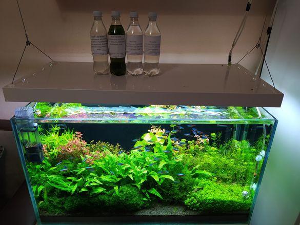 Торове за аквариум