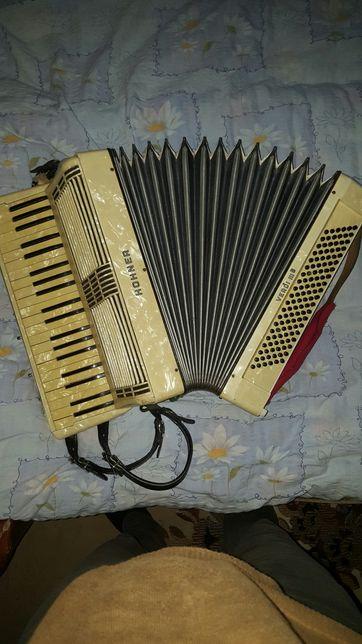 Vand acordeon Hohner