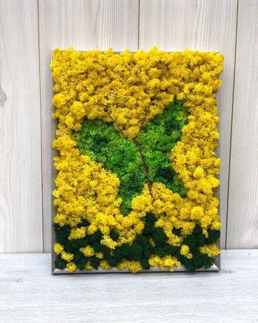 Tablou fluture 43×33 cm decorat cu licheni în nuante de verde/galben