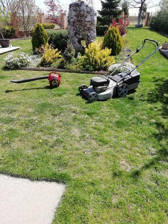 Tund iarba gazon defrișări