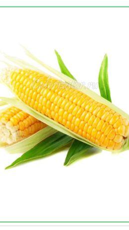 Кукуруза оптом(не кормовая)