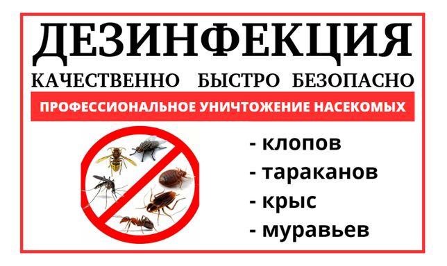 Уничтожение клопов,тараканов,муравьев,крыс,клещей,блох,ос! ДЕЗИНФЕКЦИЯ