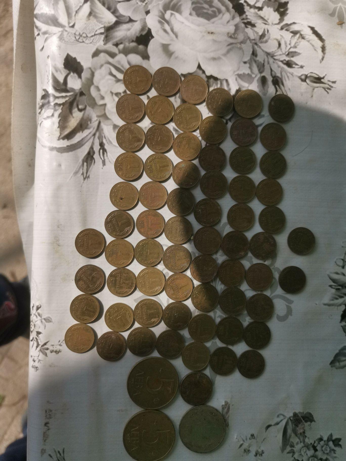 Монети 71 броя  стотинки