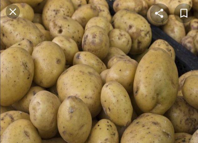 Продам картофель урожай 2020 года, очень вкусный