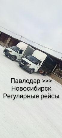 Павлолар Новосибирск