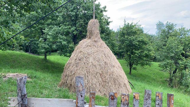 Teren Comarnic: Ideal pensiune/casa vacanta, momentan livada de vis!