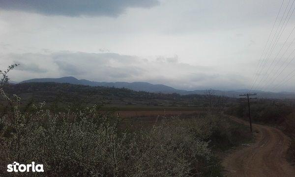 vand teren sat Tarcaia, jud Bihor, pret negociabil
