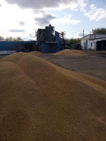 Комплекс по производству и переработке зерновых и масличных культур...