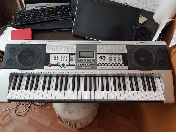 Синтезатор, пианино Cortland