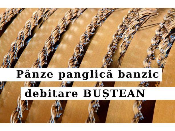 Panza panglica banzic FARMER 4200x40 debitare bustean I Premium GOLD