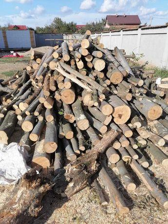 Vând lemne de foc, sparte sau chituci