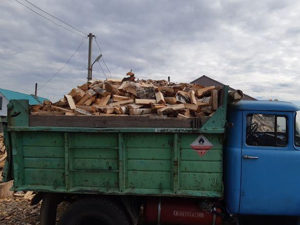 Дрова  Береза,Тополь,Вяз машиной и в мешках колотые и чурками.