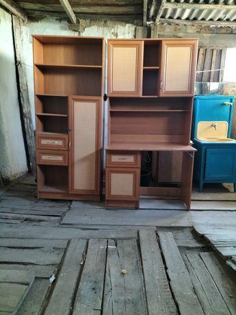 Компьютерный стол и шкаф для книг