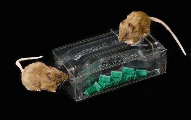 Средства от грызунов (мышей, крыс, полёвок) | Мышеловки, ловушки