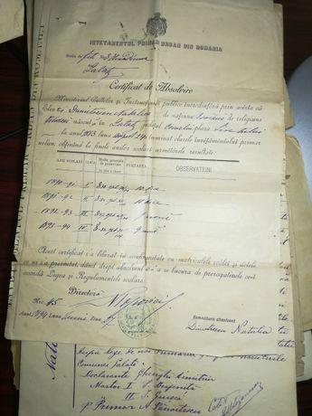 Certificat absolvire clasele invatamantului primar