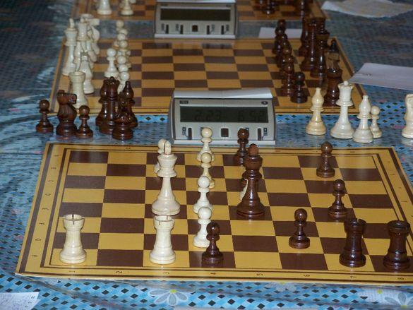 Шахматни Уроци за Начинаещи и Напреднали