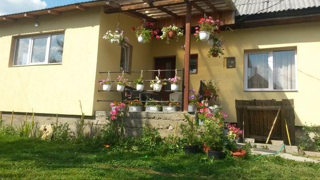 Casa cu curte in Vatra Dornei