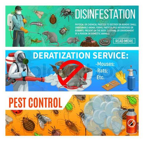 Дезинфекция ! Избавляем от клопов, тараканов , мышей, крыс !