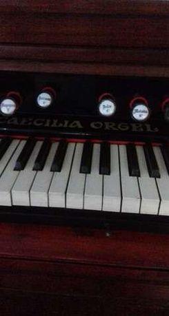 Vand Pianina pentru colectionari pe aer CAECILIA ORGEL
