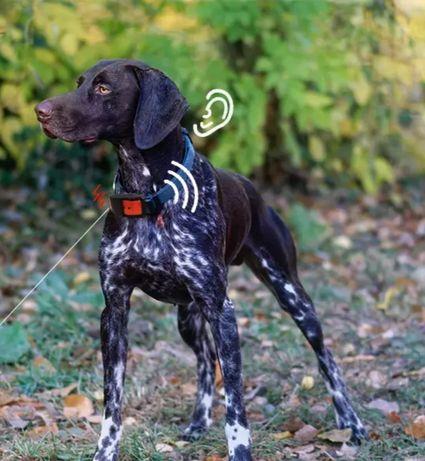 GPS тракер за куче лов