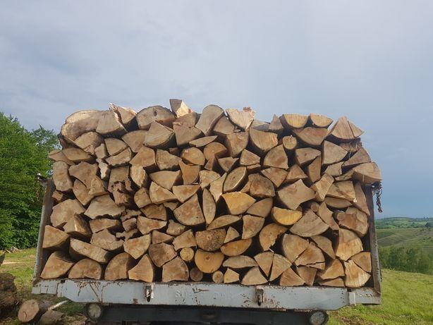 lemn de foc fag .