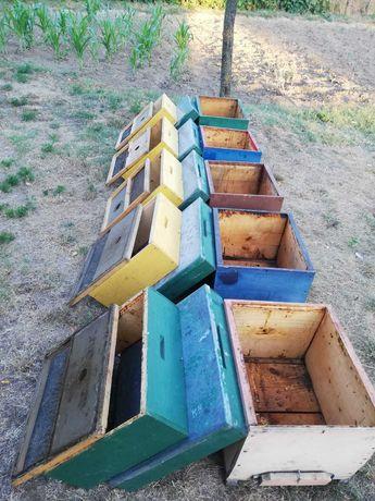 Vand 5 cutii pentru albine