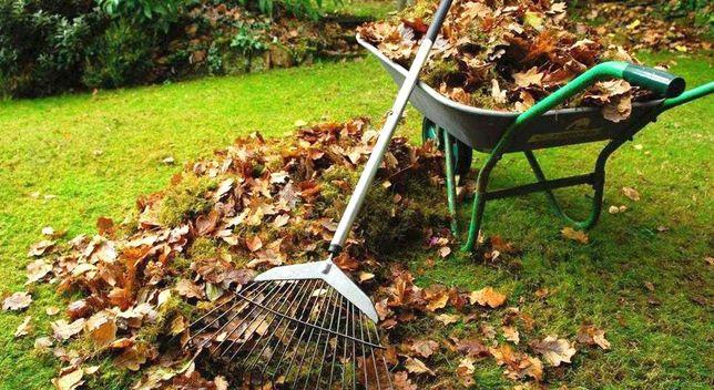 Уборка Территории,спил деревьев,посадка деревьев,стрижка газона.