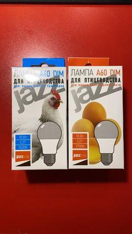 Лампы для Бройлеров