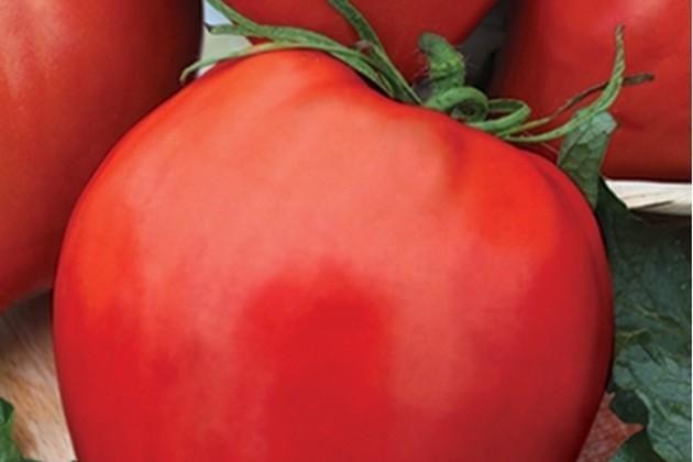 30 seminte tomate Momini Salzi (Lacrimile Fecioarei Gigant)