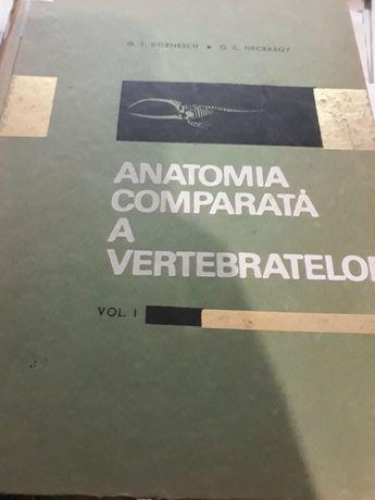 Anatomia comparata a vertebratelor vol 1