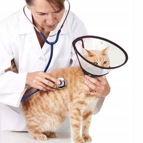 Воротник ветеринарный для животных
