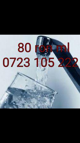 Foraje Puturi apă 80 lei ml