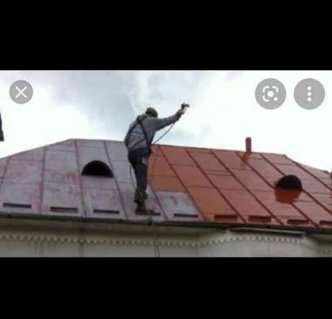 Vopsitor la acoperișuri tablă descolorată /porti garduri din fier forj