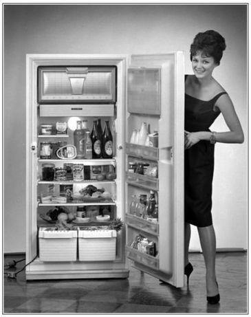Ремонт любых холодильников в городе Семей