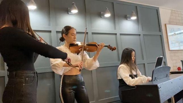 Музыканты, Живая музыка в исполнении трио