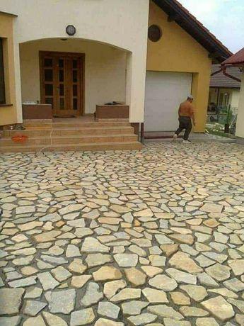 Vănd piatra naturală și plante ornamentale la pret de producător