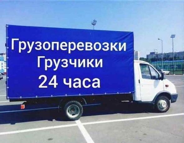 Газель грузчик межд город fiif245