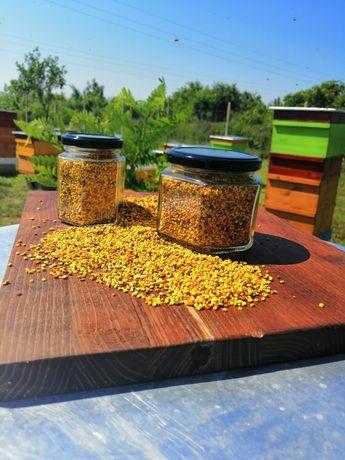 Пчелен прашец 100 %чист