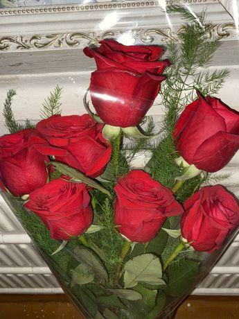 Роза цветы голландский 7 штук.