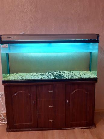 Продам срочно аквариум с тумбой