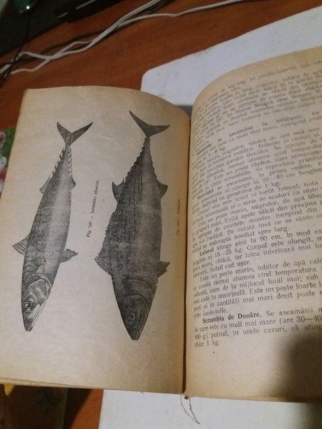Cartea pescarului 1955