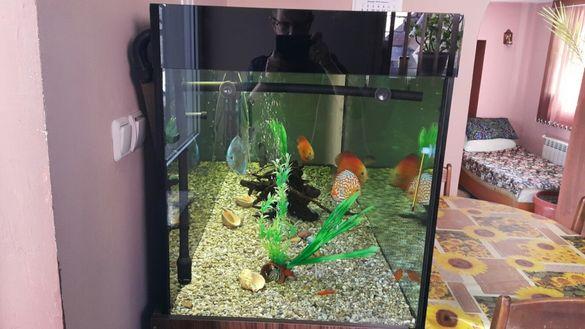 Продавам аквариум