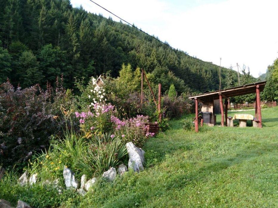 Cabana in zona Baisoara de inchiriat, cu ciubar