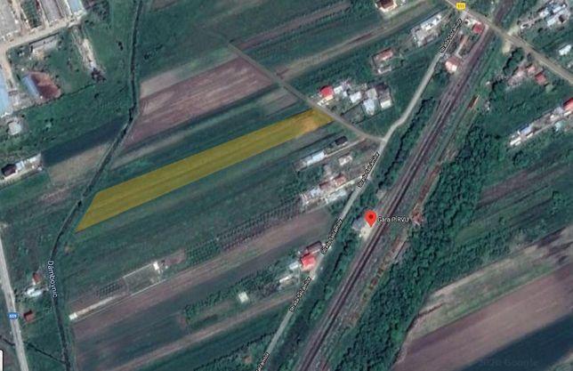 Vand teren intravilan Bradu, Arges - 10€/mp // schimb cu ap Bucuresti