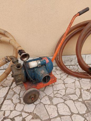 Pompa pentru mutat vin