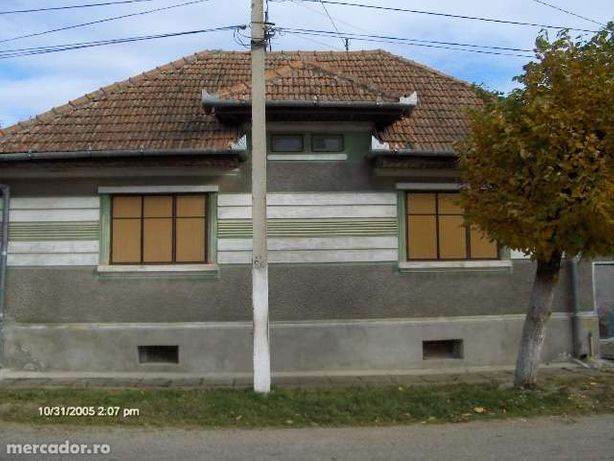 Vand casa in Vad, Sercaia lânga poiana Narciselor